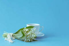 Flower lily of the valley on a blue background Royalty Free Stock Photography