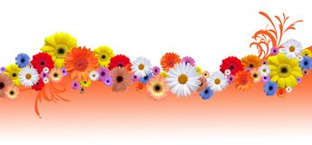 Flower line Stock Photos