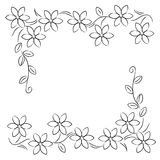 Flower line border  black white. Flower line border  on white background Stock Photo