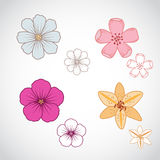 Flower Lineart Set 2 Stock Photo