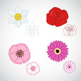 Flower Lineart Set 4 Stock Photography