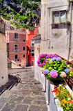 Flower lined street Royalty Free Stock Photography