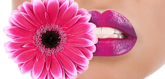 Flower lips Royalty Free Stock Images