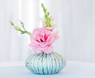 Flower lisianthus arrangement. The Vase with pink flower Royalty Free Stock Photos