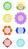 Flower Of Live Chakras Stock Image