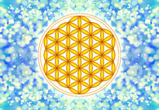Flower Of Live Symbol - Sacred Geometry Stock Image