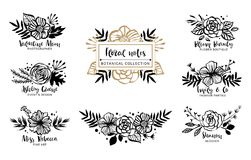 Flower logo template. Floral botanical collection. Flowers, bran Royalty Free Stock Images