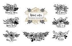 Flower logo template. Floral botanical collection. Flowers, bran Stock Illustration