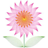 Flower lotus Royalty Free Stock Images