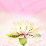The flower of a lotus is located on pearls on a pink background. Lotus and pearls. The flower of a lotus is located on pearls on a pink background Royalty Free Stock Photography