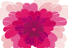 Flower love. Flower of love in the heart Royalty Free Stock Photos