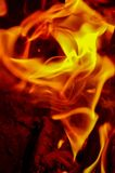 Illusion of rose blossom created by campfire flames Stock Photography