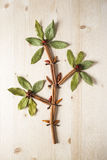 Flower made of herbs and spices Royalty Free Stock Photos