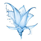 Flower Made Of Water Splashes Royalty Free Stock Photography