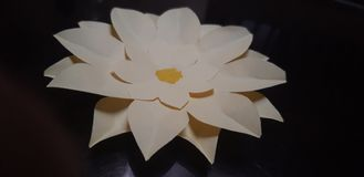 DIY Paper Flower royalty free stock photos