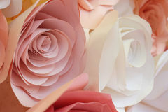 Flower made from paper Royalty Free Stock Photo