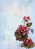 Flower Magic Stock Photo