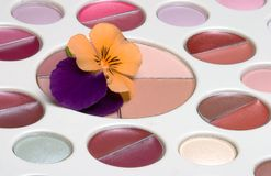 Flower on makeup set Stock Photo