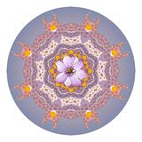 Flower mandala. Clematis. Beautiful round ornament Stock Photos