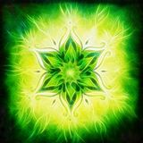 Flower Mandala on a green background fractal effect Royalty Free Stock Photo