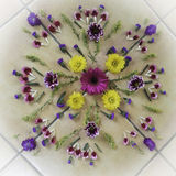 Flower Mandala. Made of whole flowers and petals royalty free stock photo