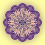 Flower Mandala with yellow background. Ornamental round floral Pattern. Royalty Free Stock Photo