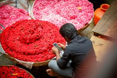 Flower market in Bangalore royalty free stock photos