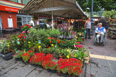 Flower market on Cours Saleya in Nice Stock Photography