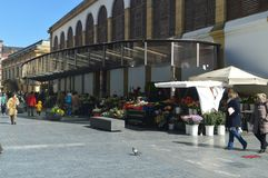 Flower Market In The Downtown In San Sebastian. Flowers Travel Nature. stock images