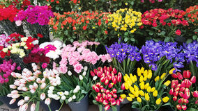 Flower Market. Florist shop with colorful  flowers Royalty Free Stock Photography