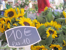 Flower market in France. Sunflowers in a flower market with chalked price label 10 Royalty Free Stock Images