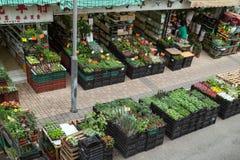 Flower Market in Hong Kong Stock Photo