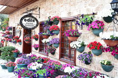 Flower market. Hotels, flower market in old town , Antalya , turkey Royalty Free Stock Photo