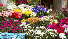 Flower Market. Image shows an outdoors farmer's flower market Royalty Free Stock Photography