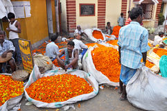 Flower Market in Kolkata Royalty Free Stock Photography