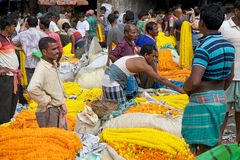 Flower market, Kolkata, India Stock Photography