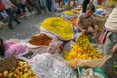 Flower market of Kolkata, West Bengal, India. KOLKATA, WEST BENGAL / INDIA - FEBRUARY 13TH, 2016 : Buying and selling of flowers in crowded and colorful Mallik Stock Image