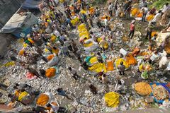 Flower market of Kolkata, West Bengal, India. KOLKATA, WEST BENGAL / INDIA - FEBRUARY 13TH, 2016 : Top view of Busy ,crowded and colorful Mallik Ghat or Stock Images