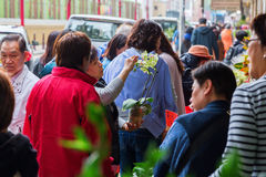 Flower market in Kowloon, Hong Kong Royalty Free Stock Photography