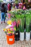 Flower market in Kowloon, Hong Kong Stock Photos
