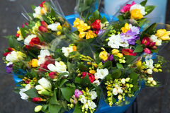 Flower. Market place flower color street Royalty Free Stock Photo