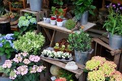 Flower market, Potsdam Royalty Free Stock Photos