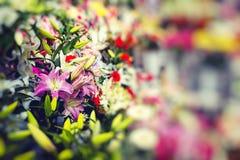 Flower market in Riga, Latvia Royalty Free Stock Photography