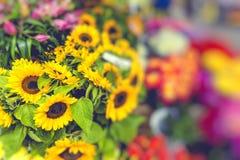 Flower market in Riga, Latvia Royalty Free Stock Image