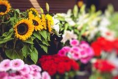 Flower market in Riga, Latvia Stock Photography