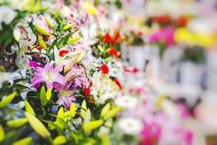 Flower market in Riga, Latvia Stock Image