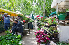 Flower Market. Split Stock Photo