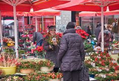Advent Market in Zagreb feature. Flower market stalls part of the Advent Market celebration. Ladies purchasing flowers for the holidays royalty free stock photography