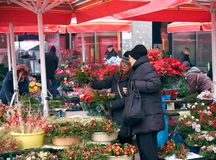 Advent Market in Zagreb feature. Flower market stalls part of the Advent Market celebration. Ladies purchasing flowers for the holidays stock image