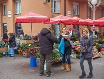 Advent Market in Zagreb feature. Flower market stalls part of the Advent Market celebration. Ladies purchasing flowers for the holidays stock photo